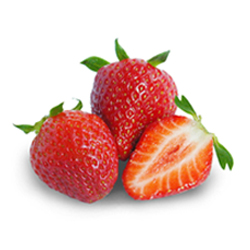 La fraise chez Elite Fruits
