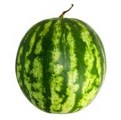 La pastèque